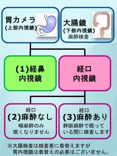 内視鏡の種類と選択できる検査方法